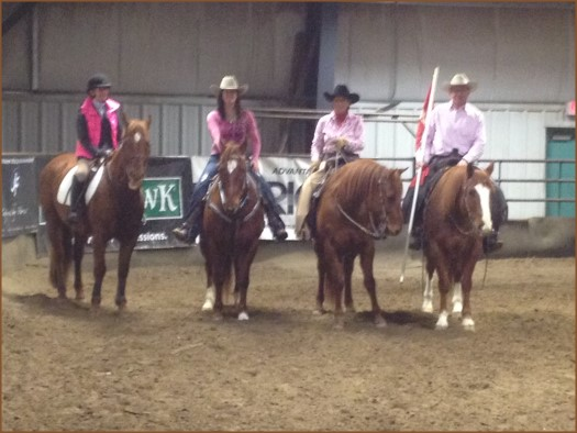 Equine Expo - Team Quarter Horse