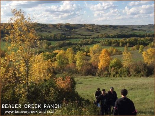 K+S Potash at Beaver Creek Ranch