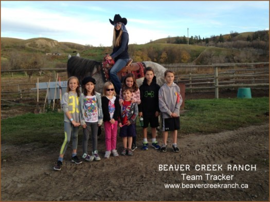 Team Tracker - Beaver Creek Ranch