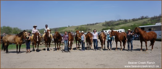 Beaver Creek Ranch - Major Pepinic horses at SRCHA Lumsden
