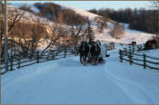 Beaver Creek Ranch - Sleigh rides - Lumsden, SK